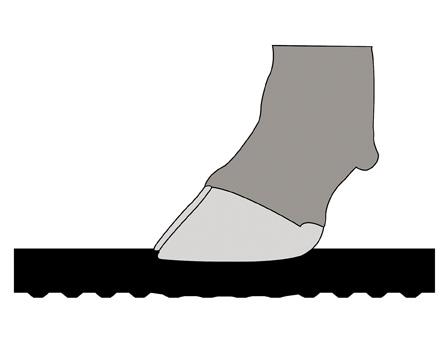 ahır zemin kauçukları